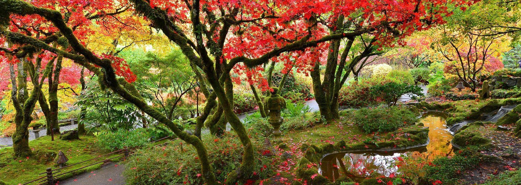 Japanese Garden Butchart