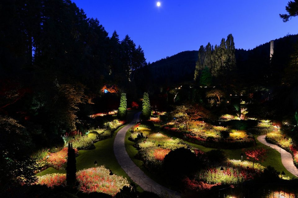 Night Illumination Butchart Gardens